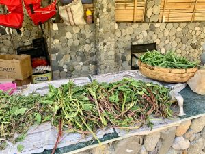 India-Vegetables-drying-in-the-sun-that-we-would-enjoy-later-for-dinner.-—-in-Champawat.