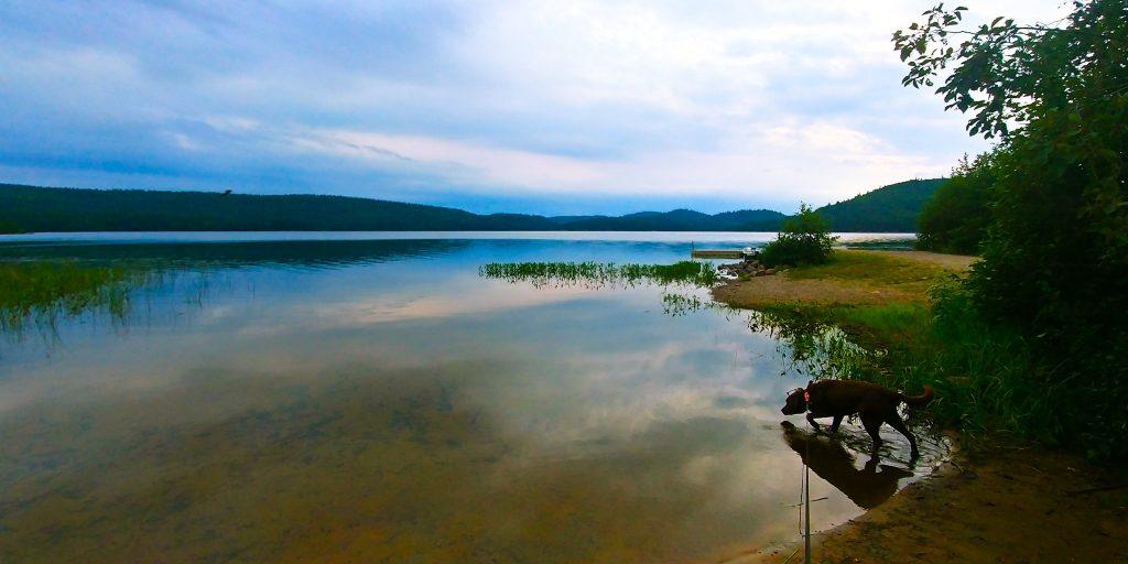 Canoe Camping photo by Nikki Gillingham