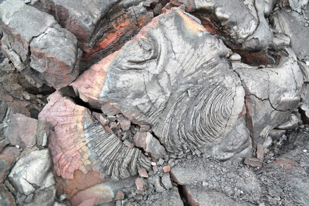 Petrified-lava