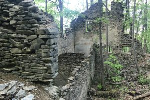 NY Ruins in Franny Reese State Park. Photo: Terri Marshall