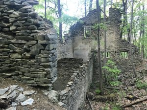 NY Ruins in Franny Reese State Park. Photo: Terri Marshall