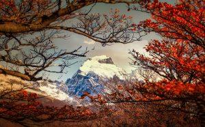 patagonia-in-autumn