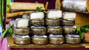 sheep-cheese-asturias