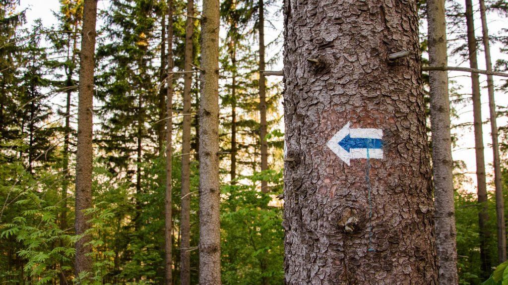 trails mark