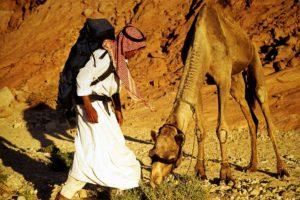 bedouin-
