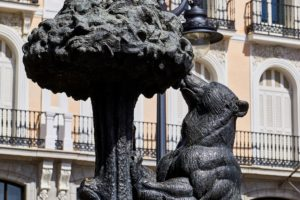 spain-bear and strawberry tree