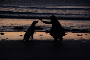 woman-dog-on-beach