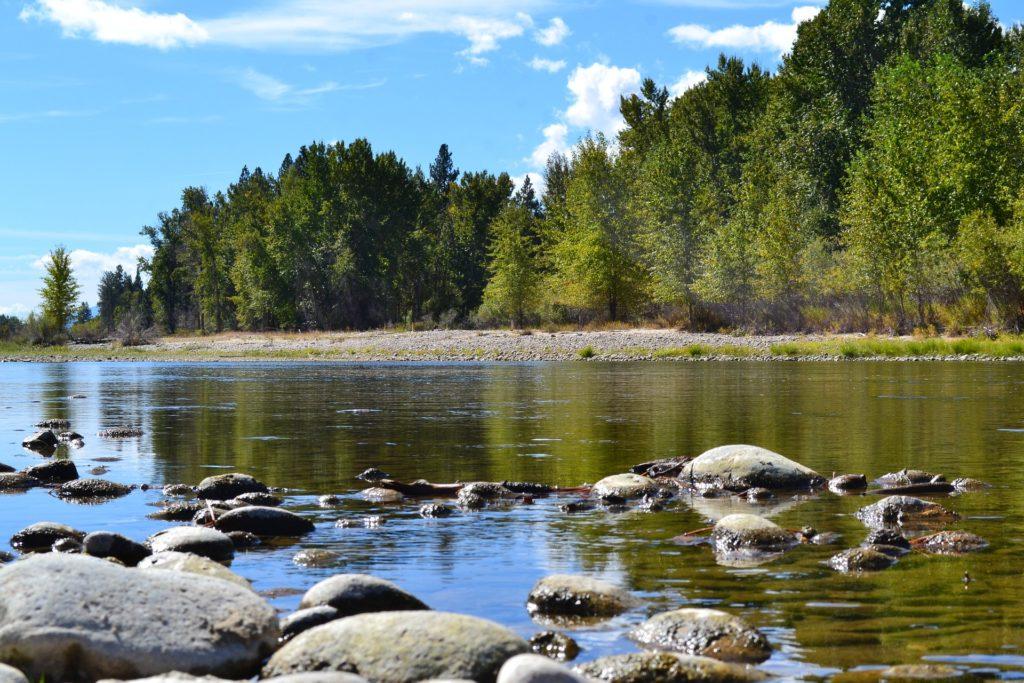 Bitterroot river in Bitterroot valley