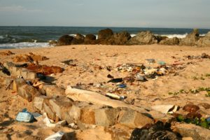 Lots of plastic waste washing up on the beach.