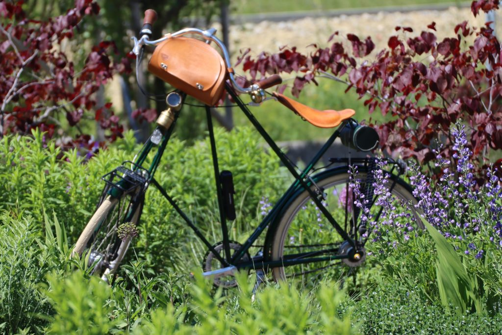 Bike in a field
