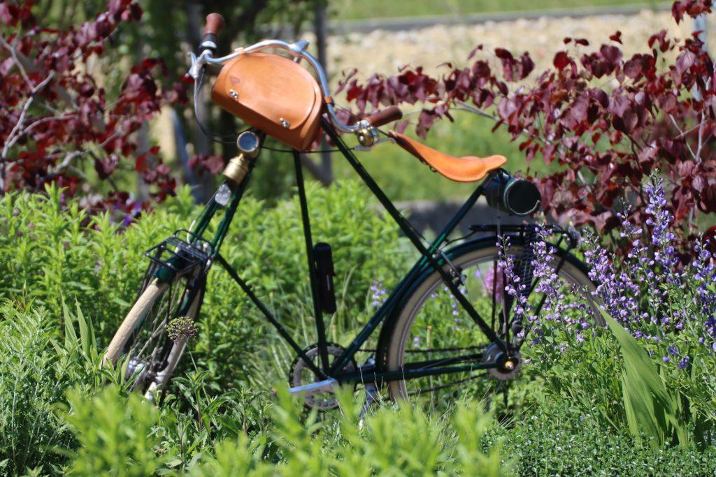 Bike in a field
