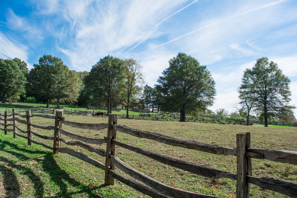 """""""cow pasture - Mt Vernon - 2014-10-20"""" by Tim Evanson is licensed under CC BY-SA 2.0"""