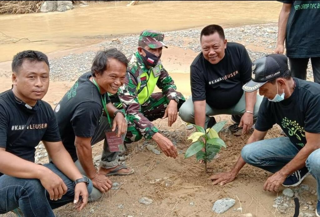 community planted tree together