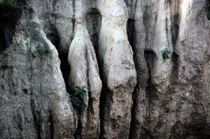 Rock textures. Photo: Sugato Mukherjee
