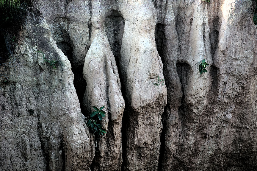 Gongoni Danga -Rock textures. Photo: Sugato Mukherjee