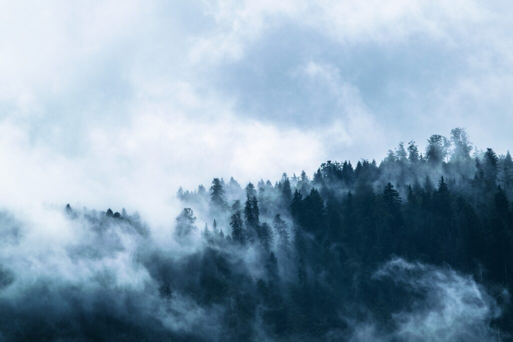 Mountain-Forest-clouds