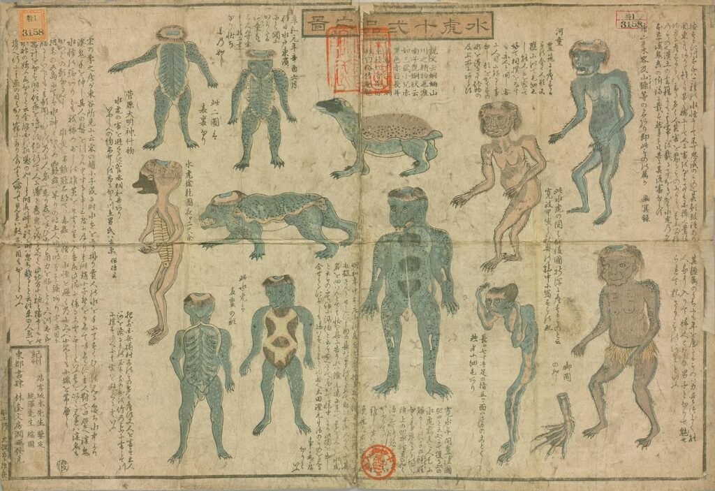 Kappa drawings from mid-19th century Suiko juni-hin no zu 水虎十二品之図 (Illustrated Guide to 12 Types of Kappa)