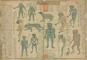 Yokai Kappa drawings from mid-19th century Suiko juni-hin no zu 水虎十二品之図 (Illustrated Guide to 12 Types of Kappa)