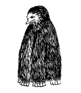 Yokai Amabiko Illustration by Mozume Takami (物集高見, 1847–23 June 1928). Courtesy of WikiMedia