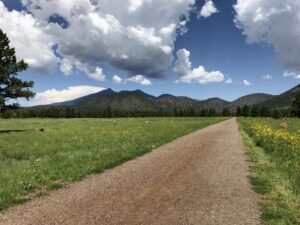 A stunning view of the San Francisco Peaks