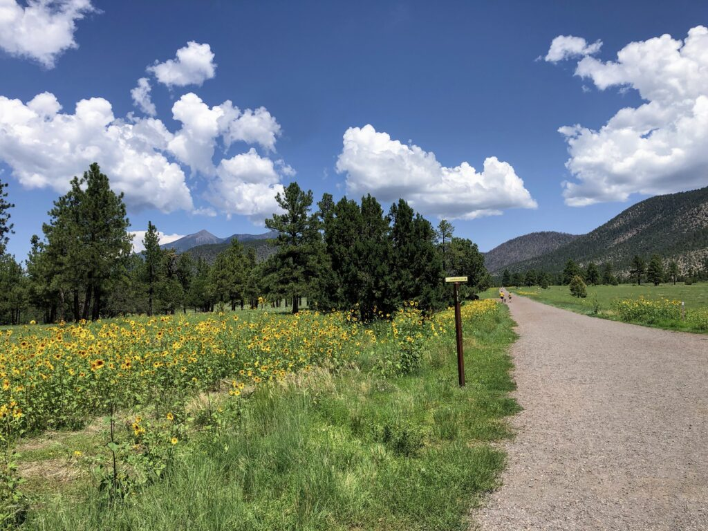 Old stagecoach road is now a jogging trail. Photo: Breana Johnson